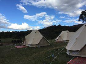 Wildfest Pop Up Camp