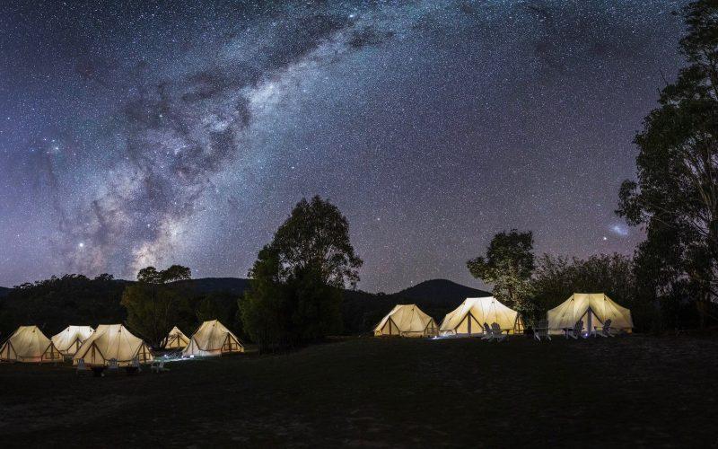Wildfest Camp
