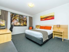 Deluxe Room interior with views of tree tops