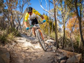 Stromlo marathon racing action.