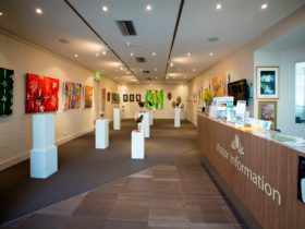 See the latest exhibition at the Gardens' Visitor Centre Gallery