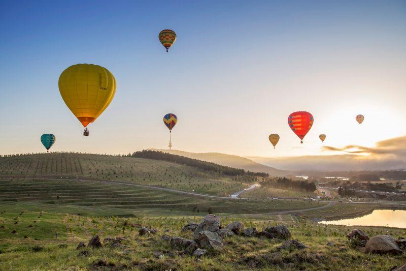 flying over the Aroboretum