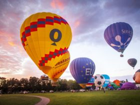Balloons rising into the sky as dawn breaks