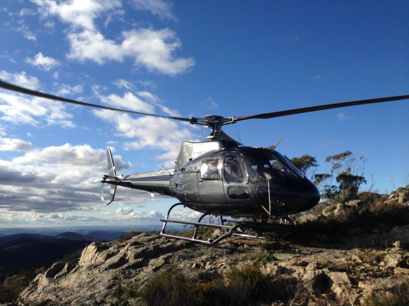 Helicopter landing high in the bush