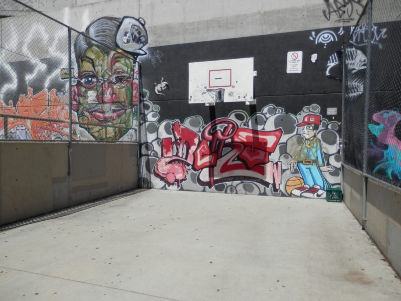 Basketball hoop at the Skate Park