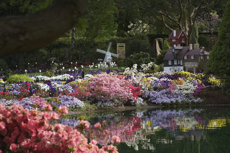 Over 30,000 annual flowers in the Spring display