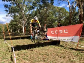A male rider bunny hops a barrier at CORC CycloCross race