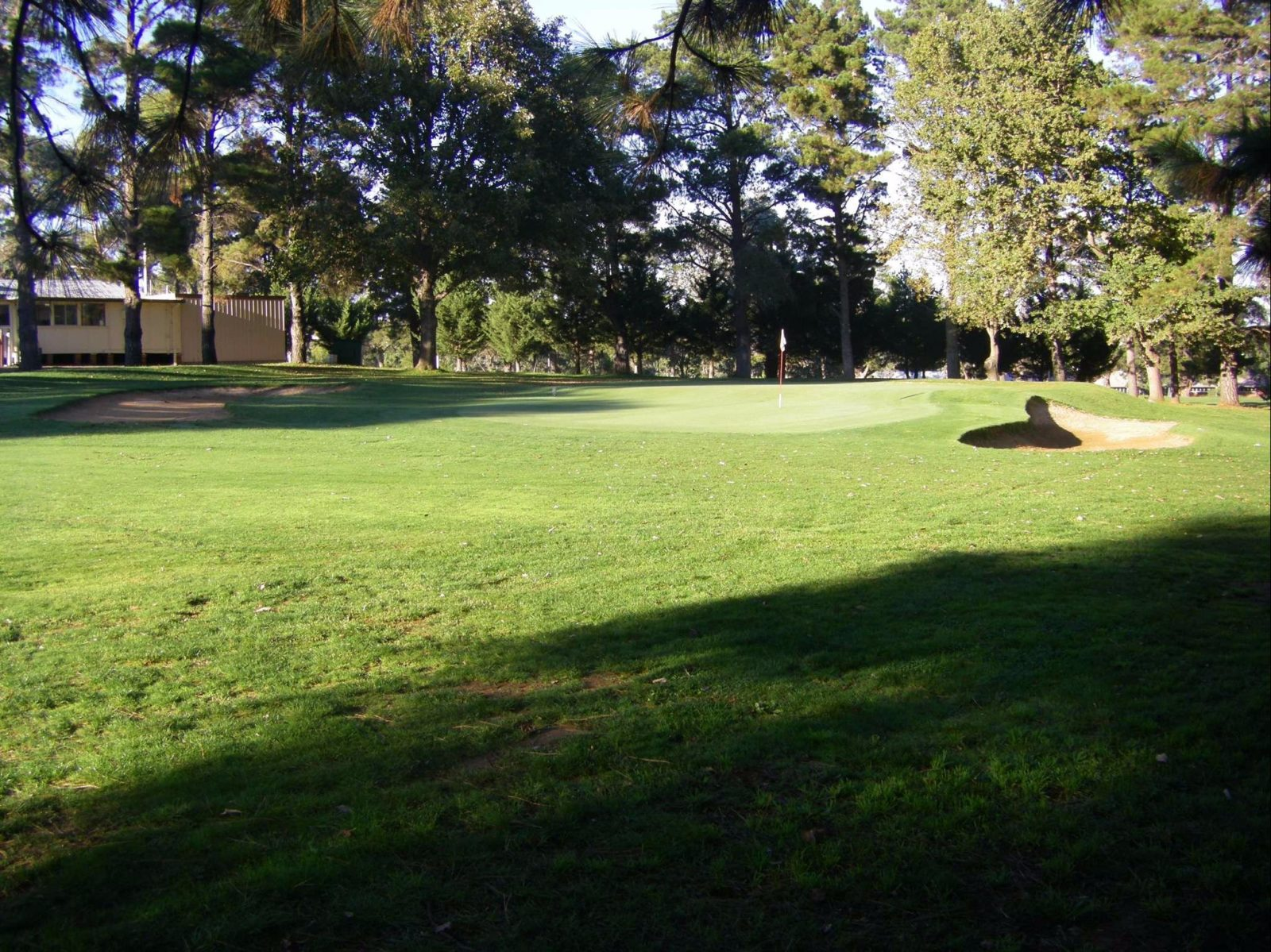 13th hole surrounded by tall trees