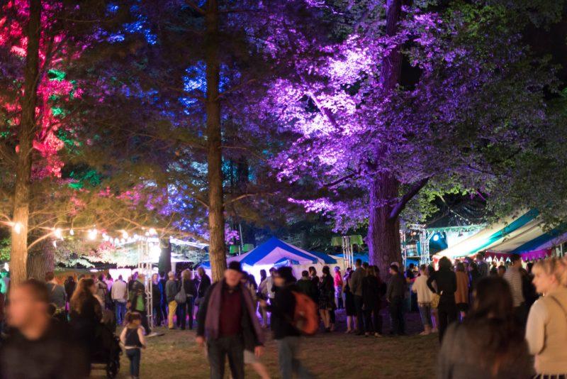 light installations on Haig Park trees