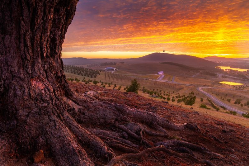 Sunrise in Canberra
