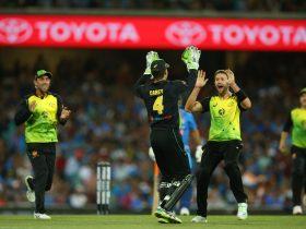 Celebrating a wicket