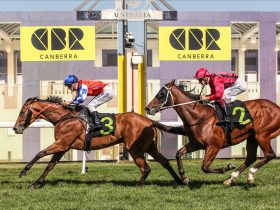Two race horses battle for first place