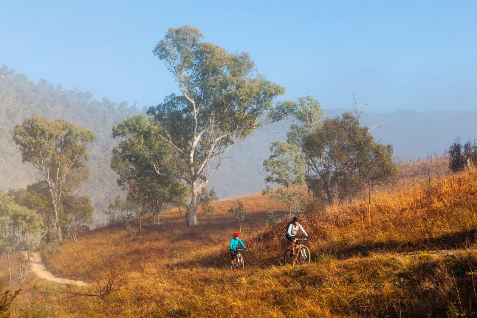 Kambah Trail