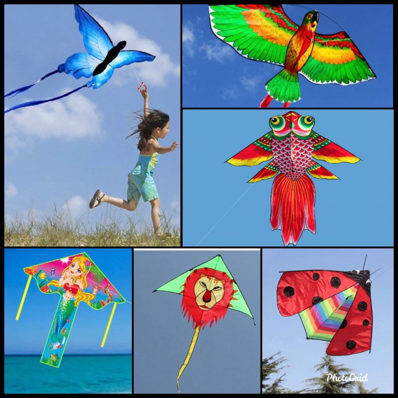 Kite Flying Festival 2020 @Canberra