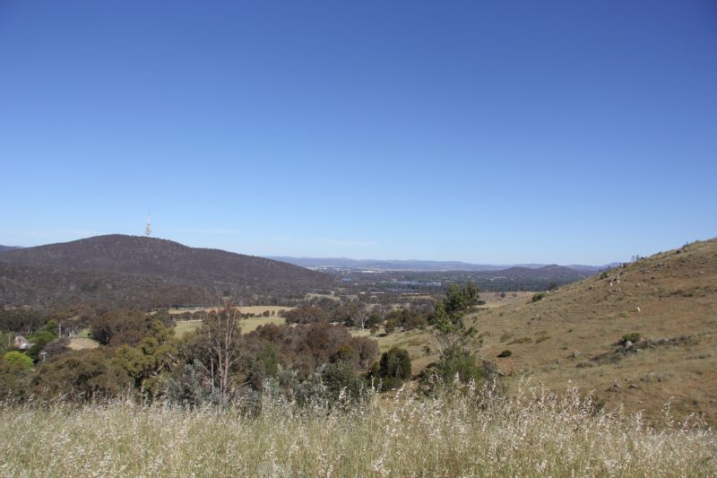 Views from Mount Painter walking track