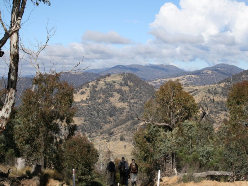 Three hikers on a trail looking at the views from Mt Tennent in Namadgi National Park