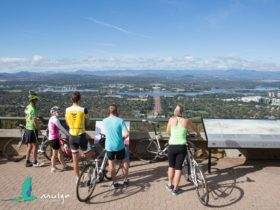5 cyclists stand with their bikes behind the Marion Mahony Griffin View handrail.