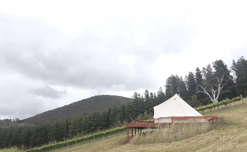 The 5m bell tent sits at the top of Mount Majura Vineyard on a custom built deck