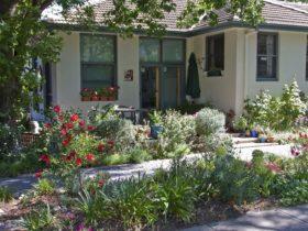 Entrance and garden