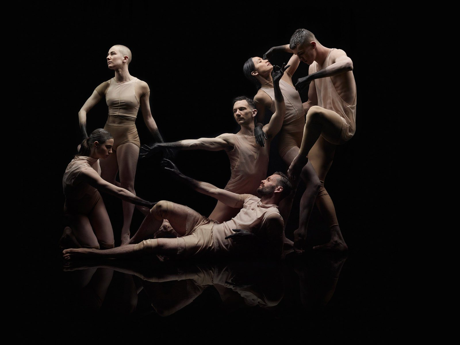 Celebrate 50 years of Sydney Dance Company