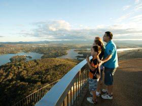 Family looking over Canberra from the Telstra Tower lookout