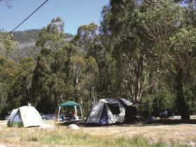 Camping at Woods Reserve. Photo courtesy of Allan Frith