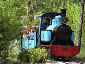 Miniature train