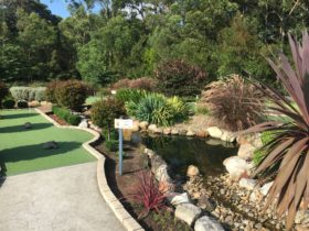 Husky Mini Golf, Huskisson NSW