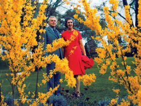A Changing Australia: The time of Gough Whitlam