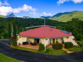 A View of Mount Warning Bed and Breakfast