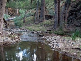 Abercrombie River National Park