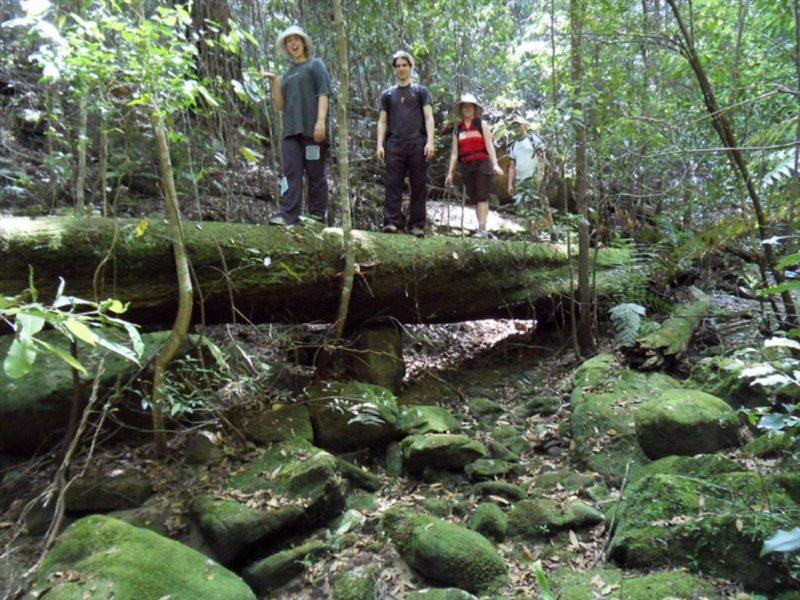 Aboriginal Blue Mountains Walkabout