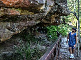 Aboriginal heritage walk, Ku-ring-gai Chase National Park. Photo: Andrew Richards/OEH