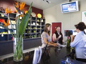 Hunter valley cellar door