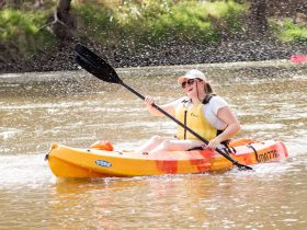 Kayaking the Macquarie River at Dubbo.