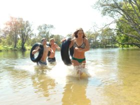 Albury - Murray River Precinct