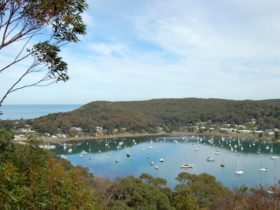 Allen Strom Lookout, Bouddi National Park. Photo: Susan Davis