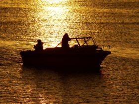 Alonga Boat Hire