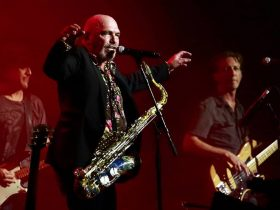 Black Sorrows Performing