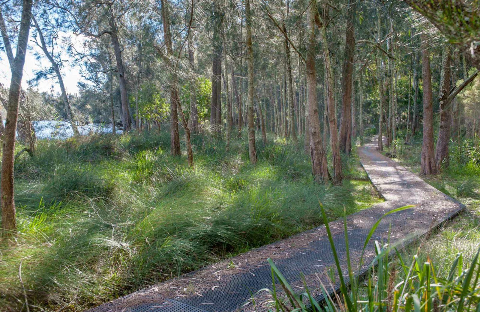 Anabranch Loop Track, Corramy Regional Park. Photo: Michael van Ewijk