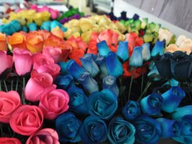 Wooden Roses for sale at Market