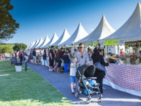 Food and wine aplenty at the annual AnnanROMA Food and Wine Festival