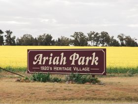 Welcome to Ariah Park