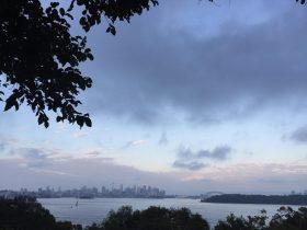 Art Classes Outdoors Around Sydney Harbour