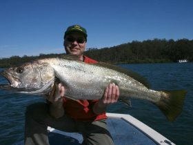 Aussie Fish Estuary Adventures - Guided Fishing Charters