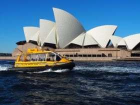 Water Taxis Passing the Opera House