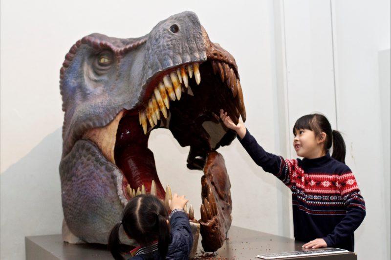 Girls with Dinosaur