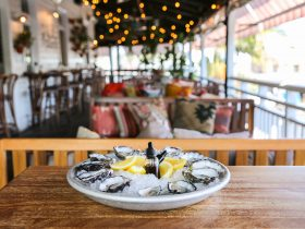 freshly shucked oysters on a tray of ice with fresh lemon. Placed on a table with lounges