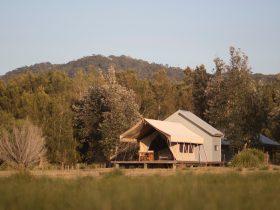 bawley point glamping safari tent