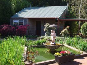 Pond garden and exterior of Cottage One